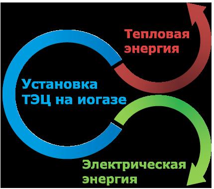 BIO System